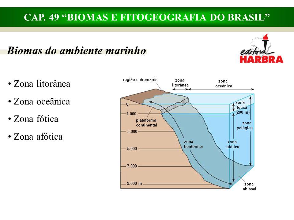 """CAP. 49 """"BIOMAS E FITOGEOGRAFIA DO BRASIL"""" Biomas do ambiente marinho Zona litorânea Zona oceânica Zona fótica Zona afótica região entremarés zona lit"""