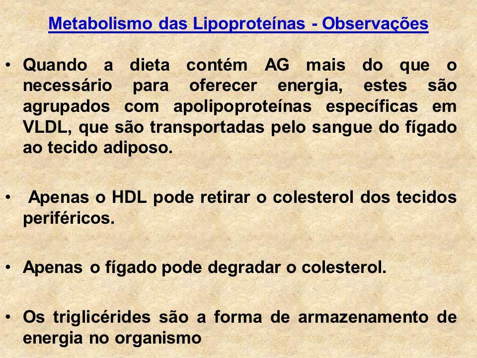 Quando a dieta contém AG mais do que o necessário para oferecer energia, estes são agrupados com apolipoproteínas específicas em VLDL, que são transportadas pelo sangue do fígado ao tecido adiposo.