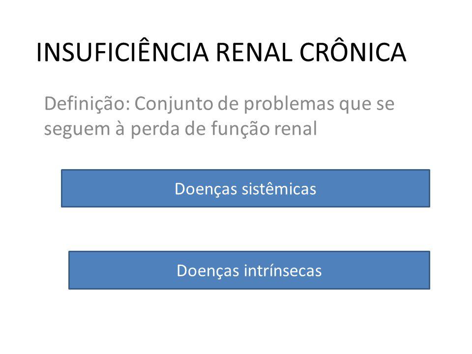 INSUFICIÊNCIA RENAL CRÔNICA Definição: Conjunto de problemas que se seguem à perda de função renal Doenças sistêmicas Doenças intrínsecas
