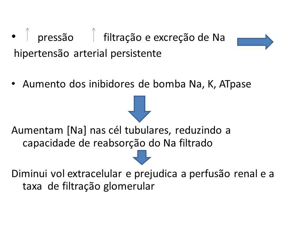 pressão filtração e excreção de Na hipertensão arterial persistente Aumento dos inibidores de bomba Na, K, ATpase Aumentam [Na] nas cél tubulares, reduzindo a capacidade de reabsorção do Na filtrado Diminui vol extracelular e prejudica a perfusão renal e a taxa de filtração glomerular