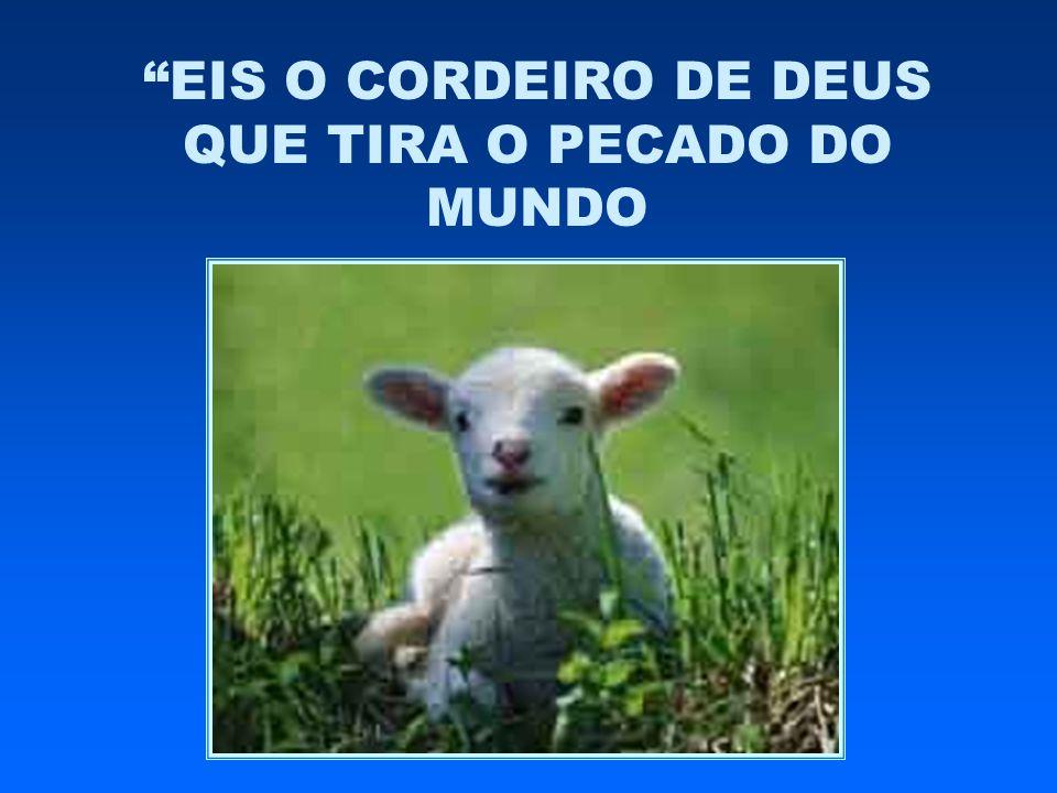 """""""EIS O CORDEIRO DE DEUS QUE TIRA O PECADO DO MUNDO"""