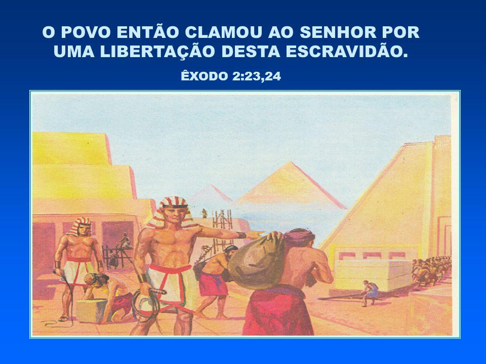 O POVO ENTÃO CLAMOU AO SENHOR POR UMA LIBERTAÇÃO DESTA ESCRAVIDÃO. ÊXODO 2:23,24