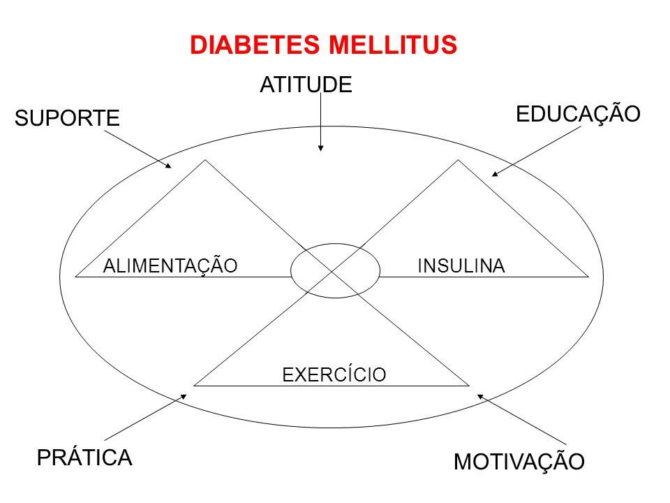 ALIMENTAÇÃOINSULINA EXERCÍCIO SUPORTE EDUCAÇÃO ATITUDE PRÁTICA MOTIVAÇÃO DIABETES MELLITUS