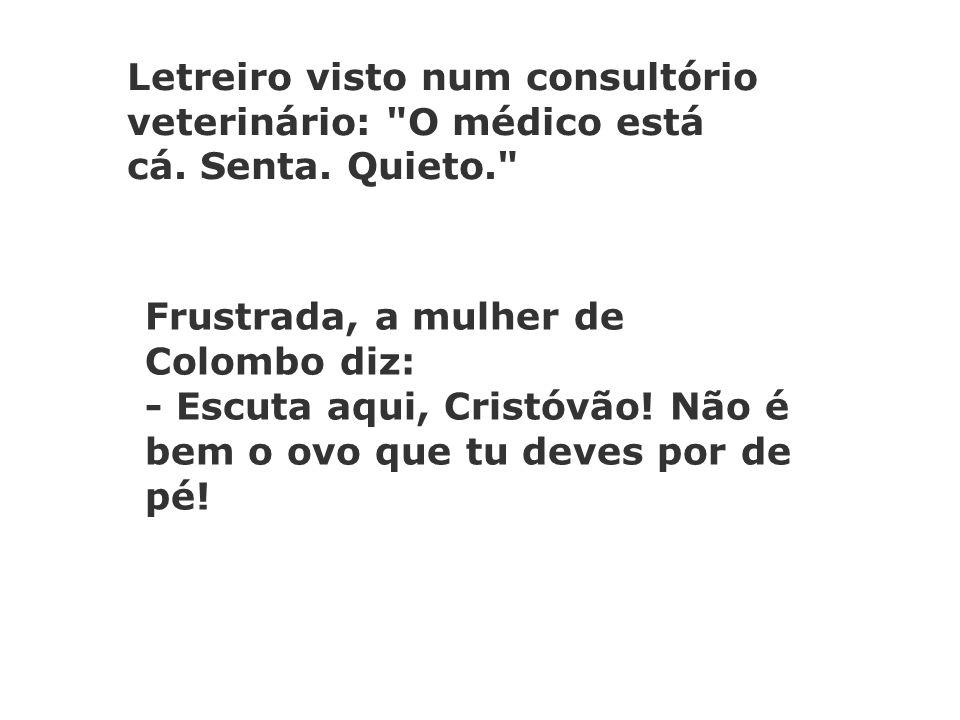 Letreiro visto num consultório veterinário: O médico está cá.
