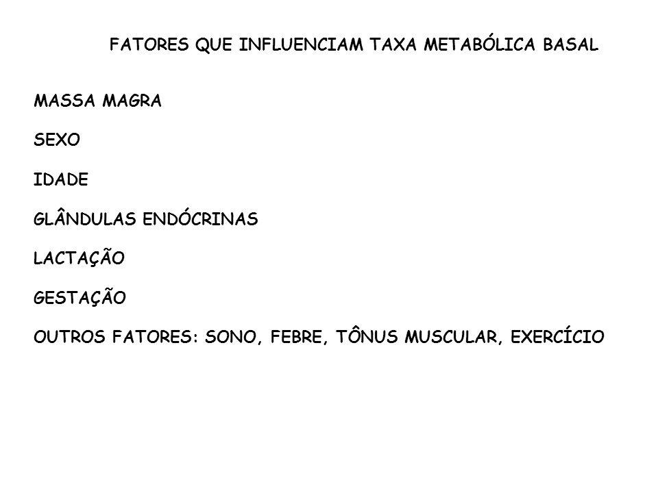 MASSA MAGRA SEXO IDADE GLÂNDULAS ENDÓCRINAS LACTAÇÃO GESTAÇÃO OUTROS FATORES: SONO, FEBRE, TÔNUS MUSCULAR, EXERCÍCIO FATORES QUE INFLUENCIAM TAXA METABÓLICA BASAL