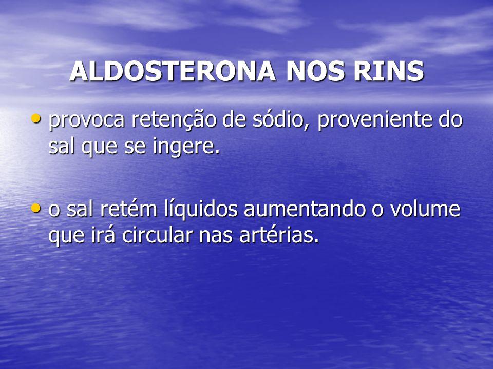 ALDOSTERONA NOS RINS provoca retenção de sódio, proveniente do sal que se ingere. provoca retenção de sódio, proveniente do sal que se ingere. o sal r