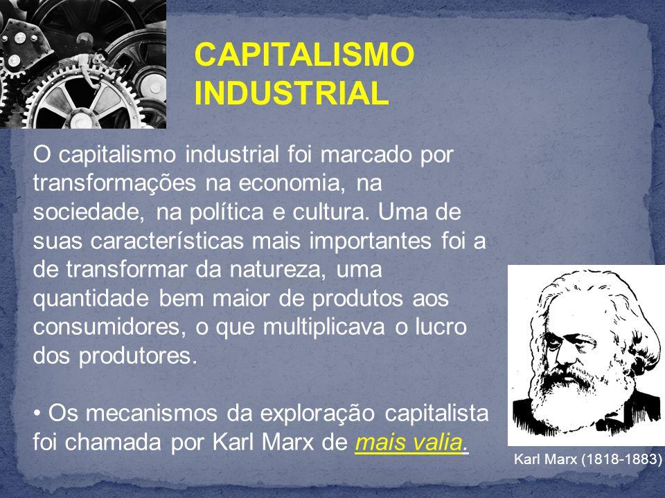 O capitalismo industrial foi marcado por transformações na economia, na sociedade, na política e cultura.