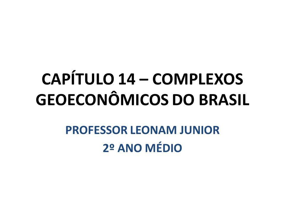 CAPÍTULO 14 – COMPLEXOS GEOECONÔMICOS DO BRASIL PROFESSOR LEONAM JUNIOR 2º ANO MÉDIO