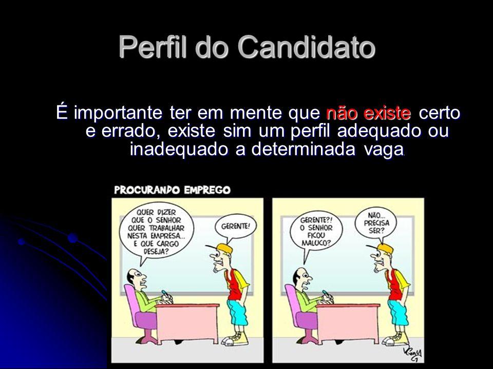 Perfil do Candidato É importante ter em mente que não existe certo e errado, existe sim um perfil adequado ou inadequado a determinada vaga.