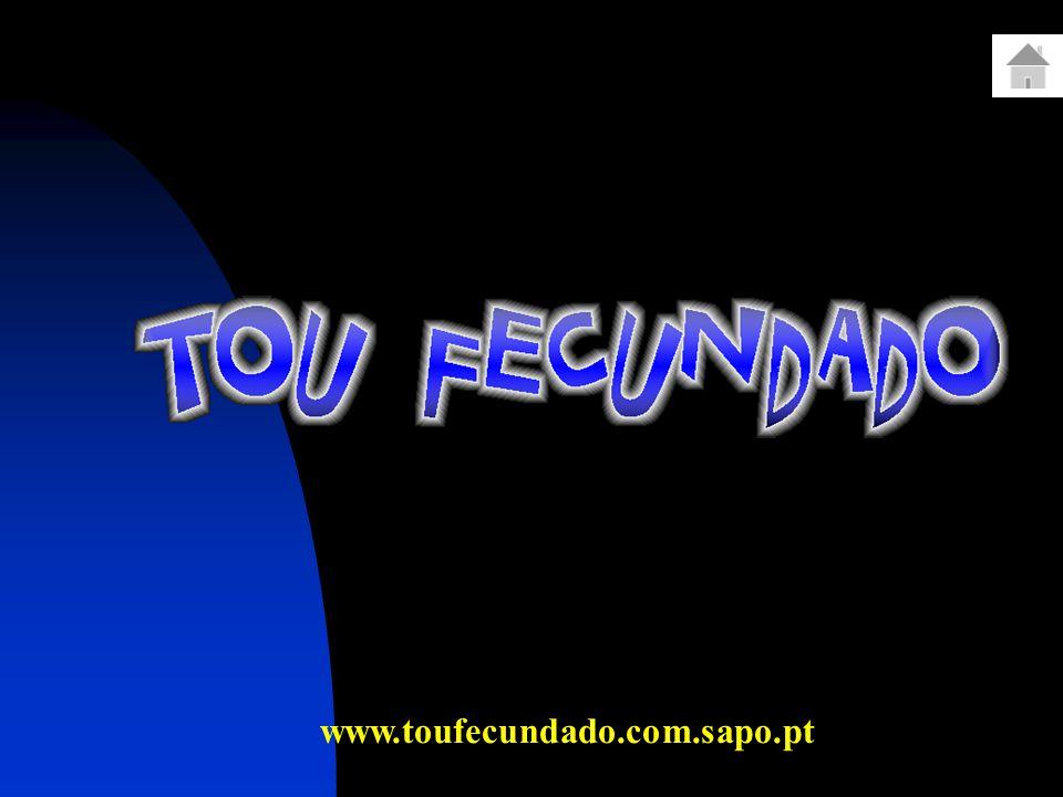 www.toufecundado.com.sapo.pt