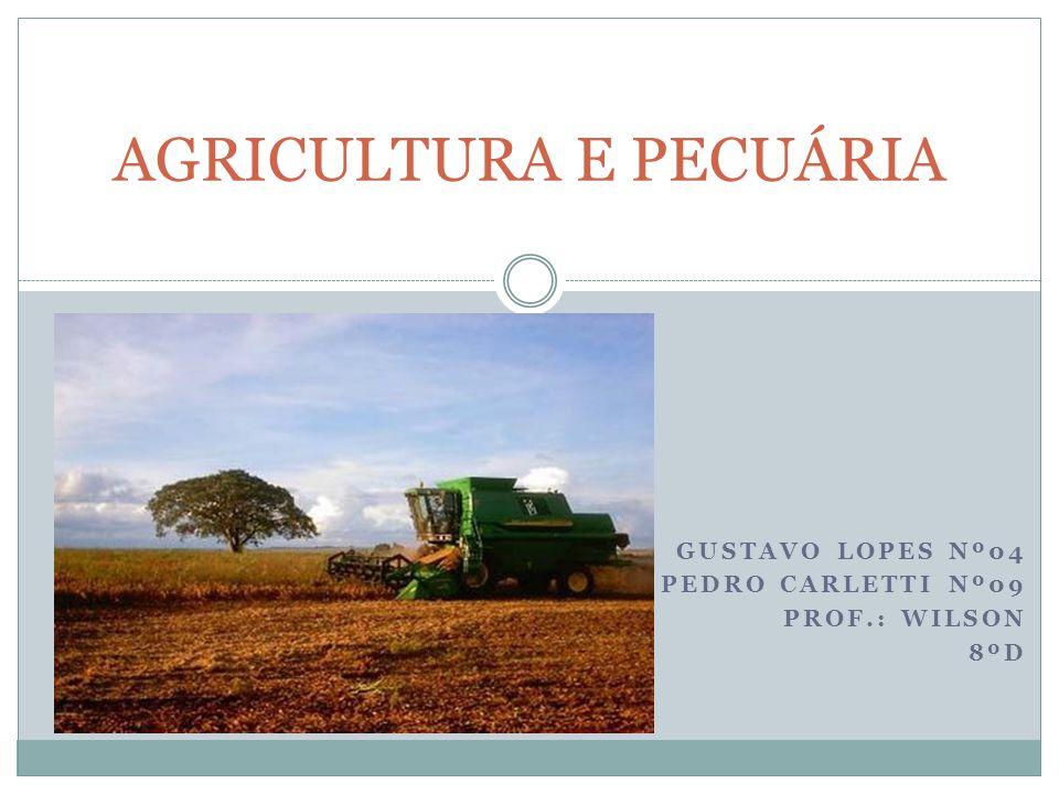 GUSTAVO LOPES Nº04 PEDRO CARLETTI Nº09 PROF.: WILSON 8ºD AGRICULTURA E PECUÁRIA