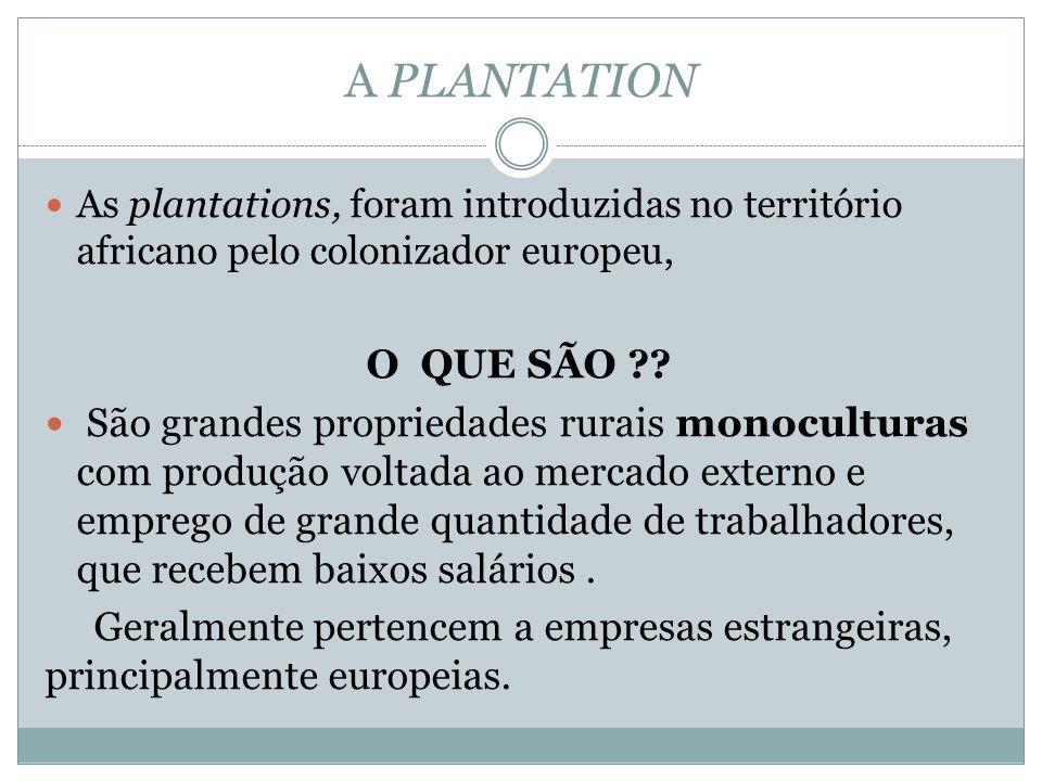 A PLANTATION As plantations, foram introduzidas no território africano pelo colonizador europeu, O QUE SÃO ?.