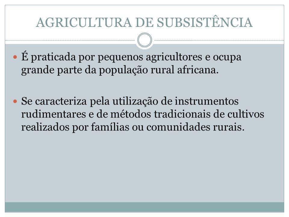 AGRICULTURA DE SUBSISTÊNCIA É praticada por pequenos agricultores e ocupa grande parte da população rural africana.