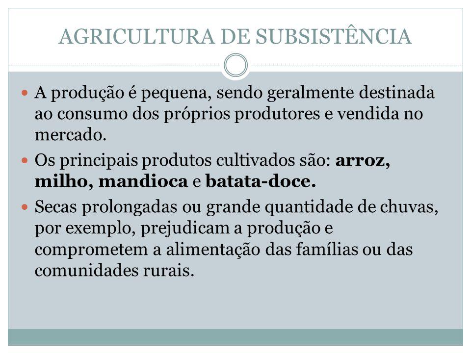 AGRICULTURA DE SUBSISTÊNCIA A produção é pequena, sendo geralmente destinada ao consumo dos próprios produtores e vendida no mercado.