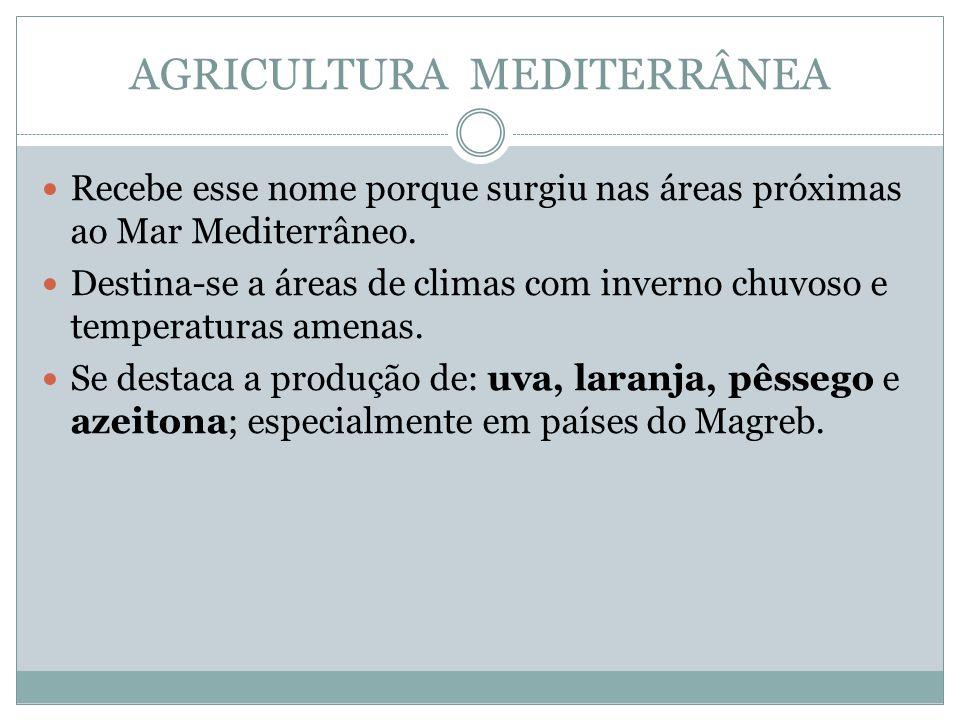 AGRICULTURA MEDITERRÂNEA Recebe esse nome porque surgiu nas áreas próximas ao Mar Mediterrâneo.