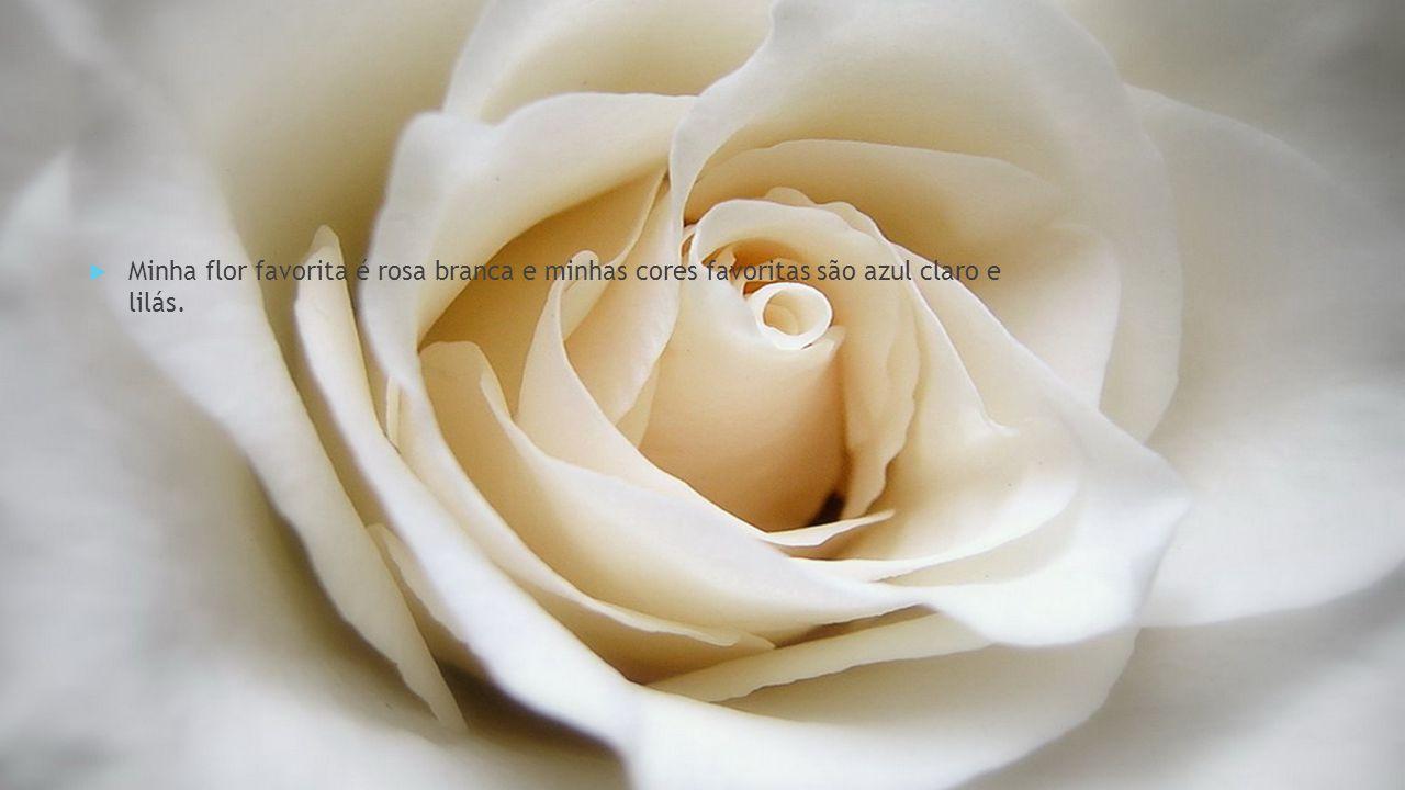  Minha flor favorita é rosa branca e minhas cores favoritas são azul claro e lilás.