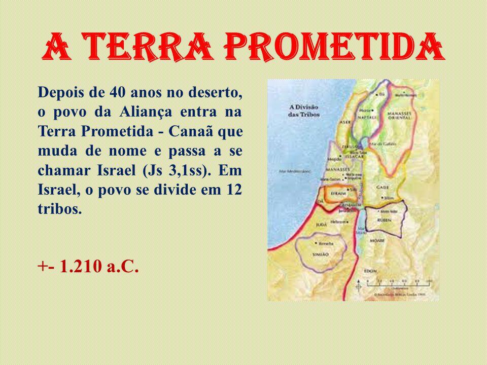 A terra prometida Depois de 40 anos no deserto, o povo da Aliança entra na Terra Prometida - Canaã que muda de nome e passa a se chamar Israel (Js 3,1ss).