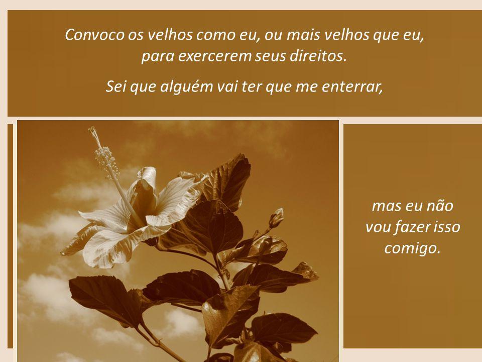 Posso dizer que eu sou a terra e nada mais quero ser. Filha dessa abençoada terra de Goiás.