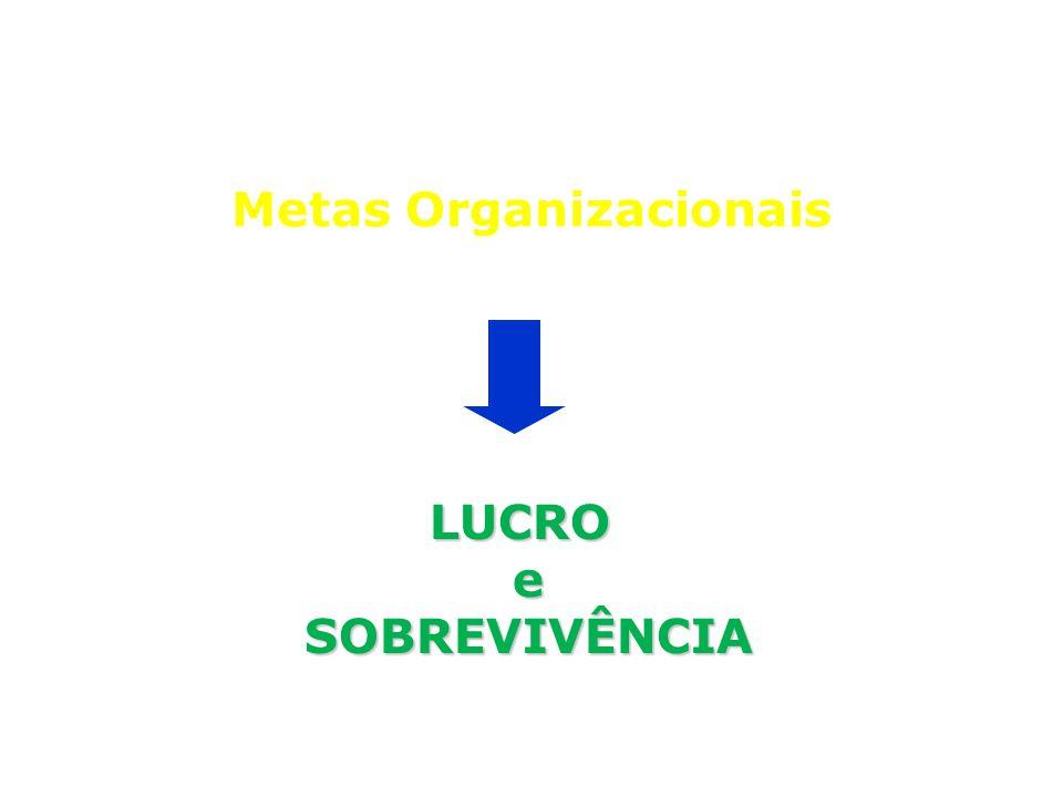 Metas Organizacionais LUCRO e SOBREVIVÊNCIA SOBREVIVÊNCIA