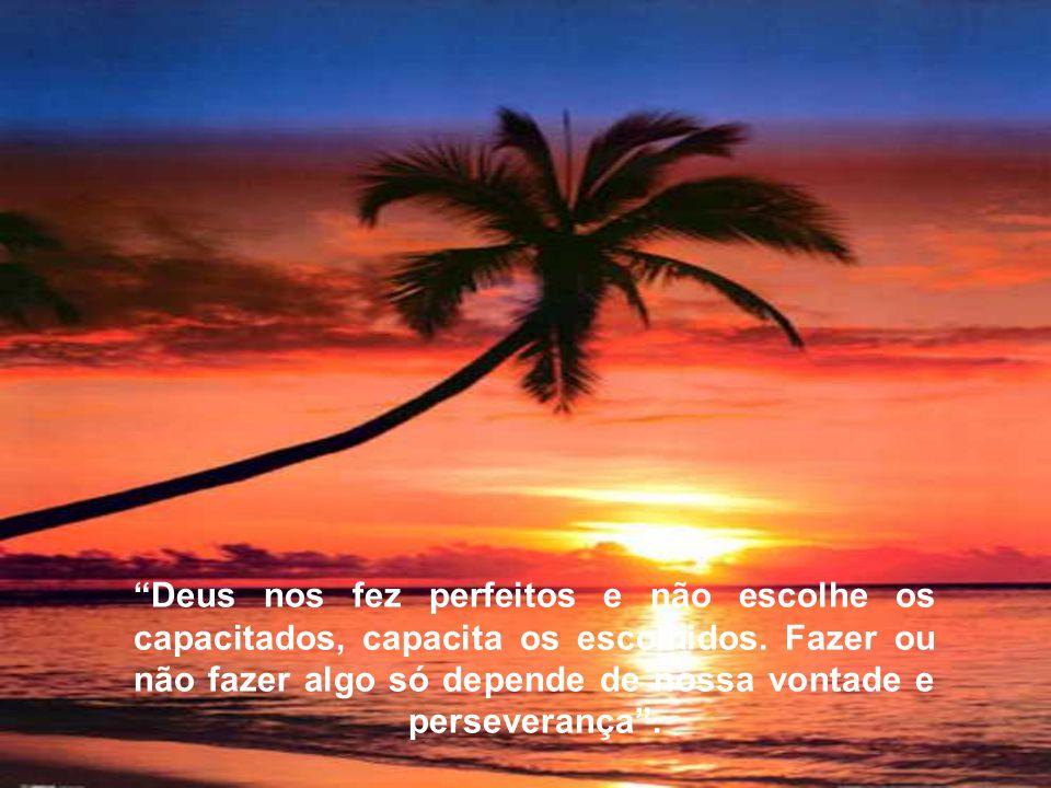 """""""Deus nos fez perfeitos e não escolhe os capacitados, capacita os escolhidos. Fazer ou não fazer algo só depende de nossa vontade e perseverança""""."""