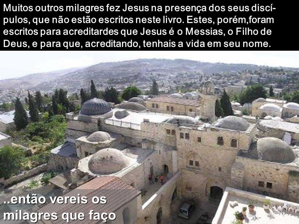 Disse-lhe Jesus: «Porque me viste acreditaste: felizes os que acreditam sem terem visto». Felizes os que CRÊEM sem ver nada, os que vos abris a uma Lu