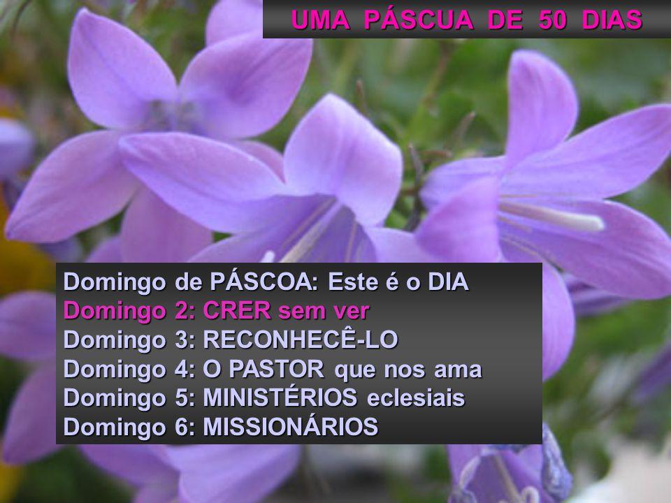 Domingo de PÁSCOA: Este é o DIA Domingo 2: CRER sem ver Domingo 3: RECONHECÊ-LO Domingo 4: O PASTOR que nos ama Domingo 5: MINISTÉRIOS eclesiais Domingo 6: MISSIONÁRIOS UMA PÁSCUA DE 50 DIAS