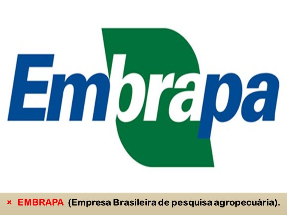 ×EMBRAPA (Empresa Brasileira de pesquisa agropecuária).