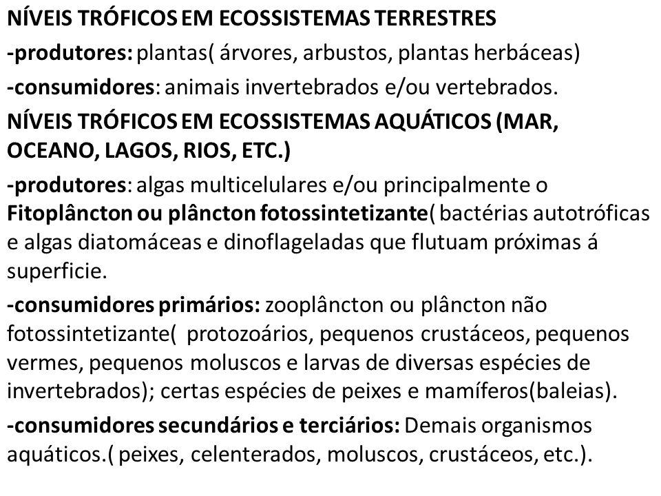NÍVEIS TRÓFICOS EM ECOSSISTEMAS TERRESTRES -produtores: plantas( árvores, arbustos, plantas herbáceas) -consumidores: animais invertebrados e/ou vertebrados.