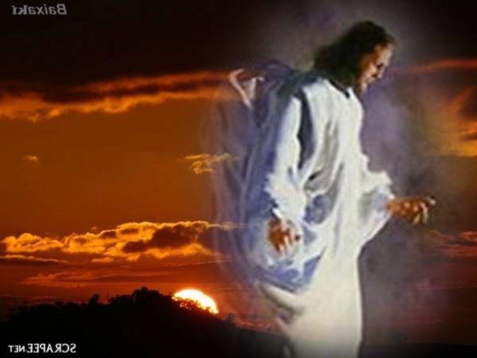 Jesus, nosso Mestre e nosso irmão, nós Te damos graças: embora tenhas desaparecido do nosso olhar, ficas connosco em cada dia, até ao fim dos tempos.