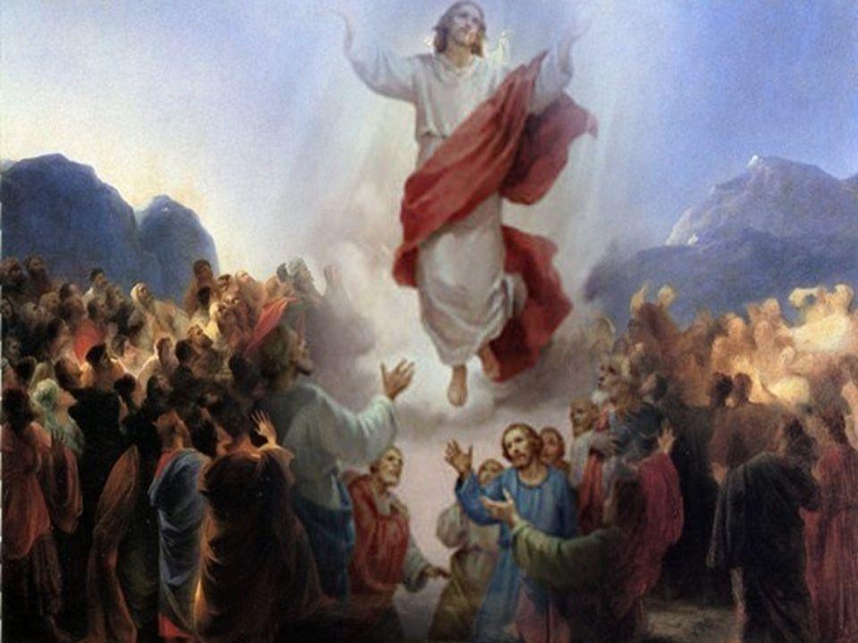 O Evangelho apresenta o encontro final de Jesus ressuscitado com os seus discípulos, num monte da Galileia. A comunidade dos discípulos, reunida à vol