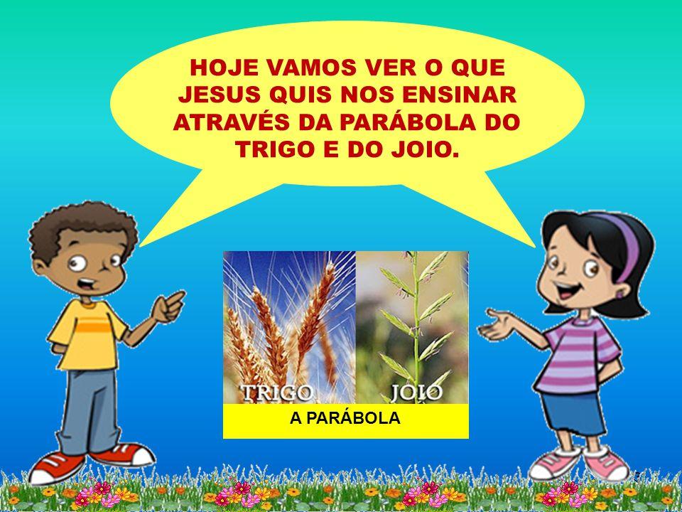 QUE CAMPO É ESTE APRESENTADO POR JESUS.