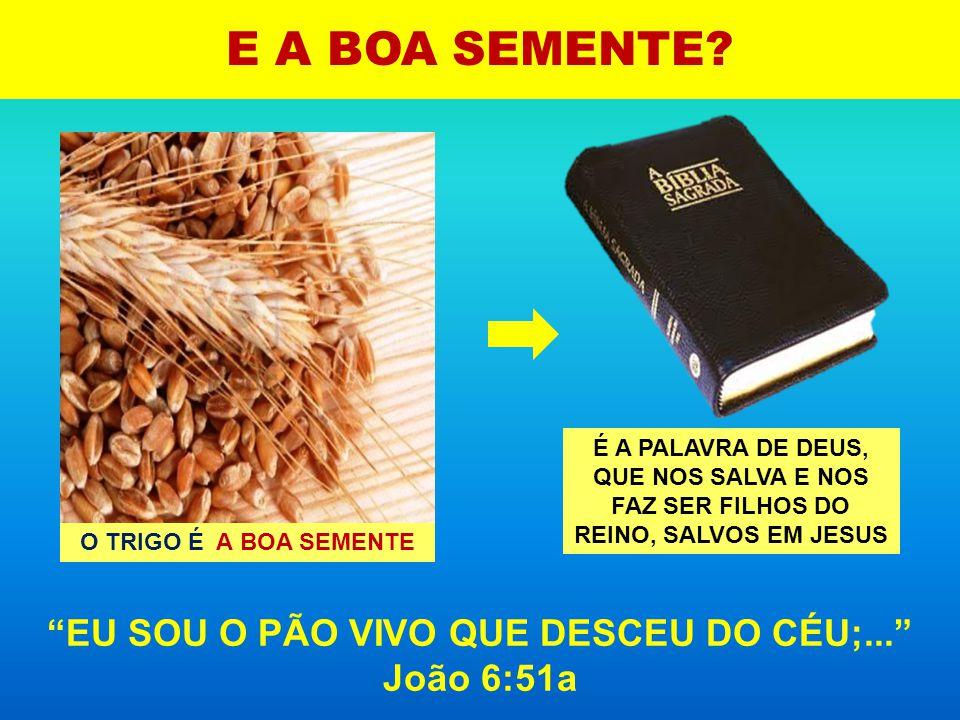 Mas, dormindo os homens, veio o seu inimigo, e semeou joio no meio do trigo, e retirou- se. Mateus 13:25