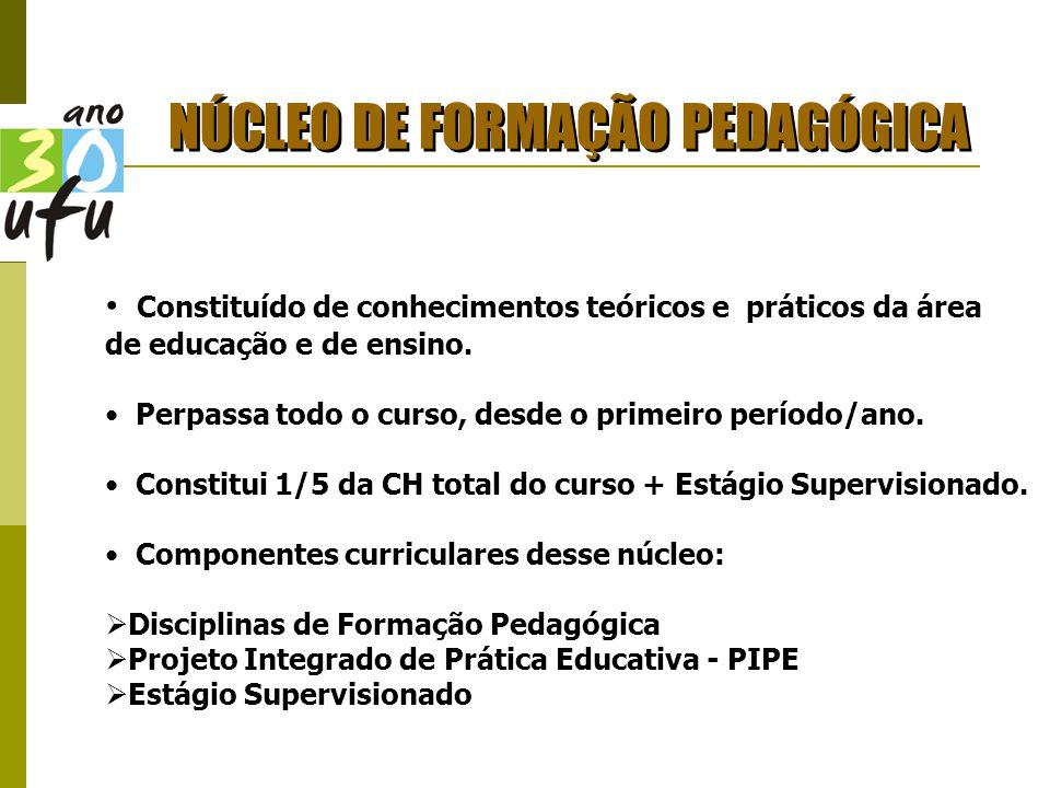 NÚCLEO DE FORMAÇÃO PEDAGÓGICA Constituído de conhecimentos teóricos e práticos da área de educação e de ensino.