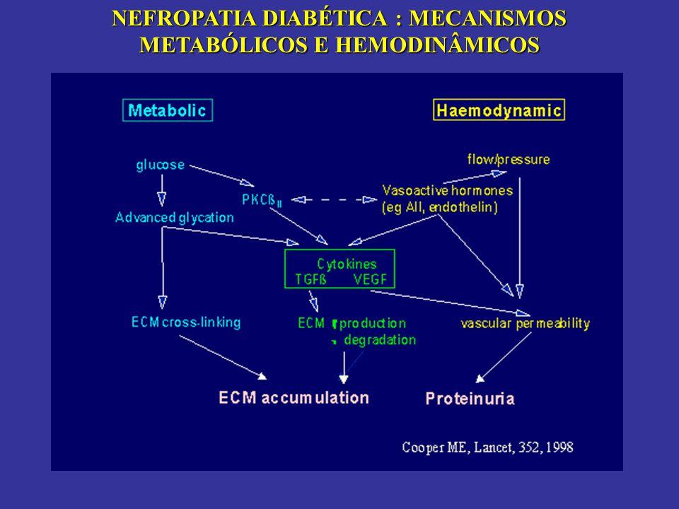 Rudberg S, Diabetes Care, 1997 Espessura da membrana basal e hemoglobina glicosilada
