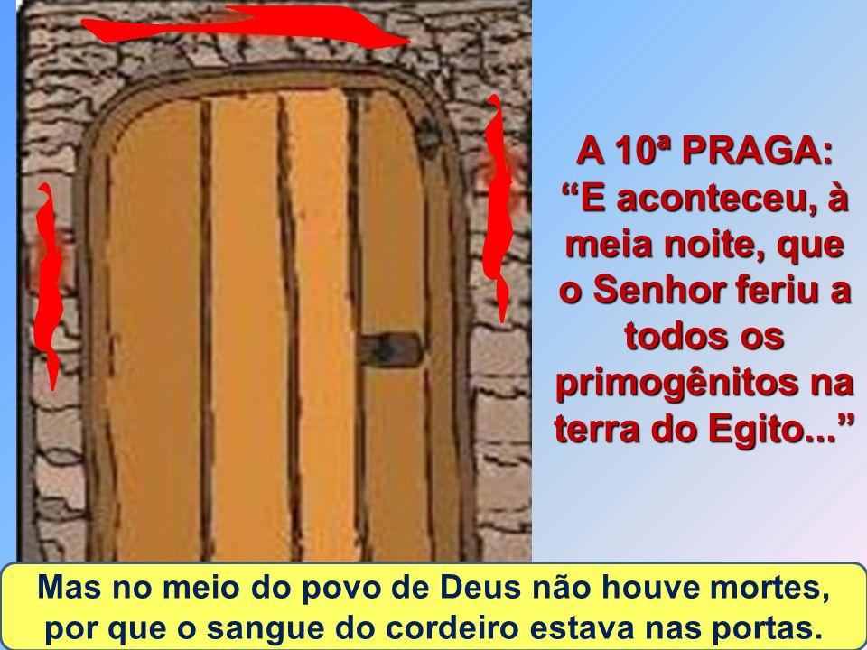 16 A 10ª PRAGA: E aconteceu, à meia noite, que o Senhor feriu a todos os primogênitos na terra do Egito... Mas no meio do povo de Deus não houve mortes, por que o sangue do cordeiro estava nas portas.