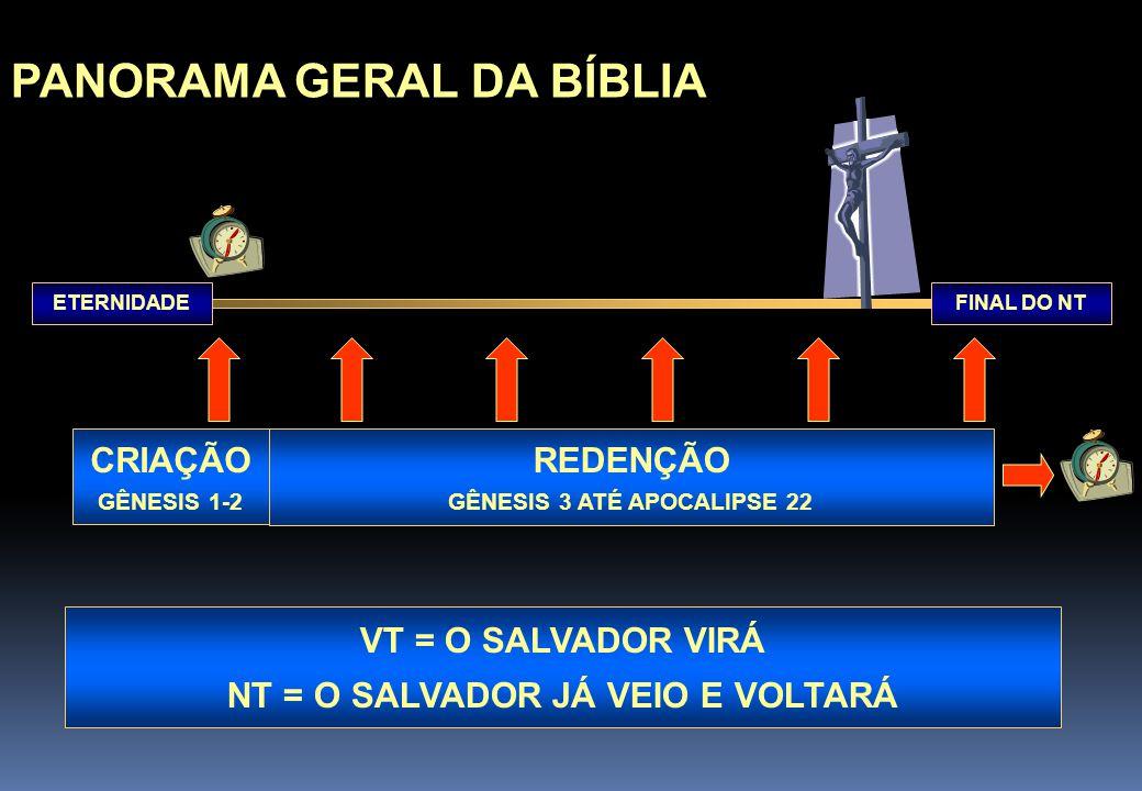 PANORAMA GERAL DA BÍBLIA FINAL DO NTETERNIDADE CRIAÇÃO GÊNESIS 1-2 REDENÇÃO GÊNESIS 3 ATÉ APOCALIPSE 22 VT = O SALVADOR VIRÁ NT = O SALVADOR JÁ VEIO E VOLTARÁ