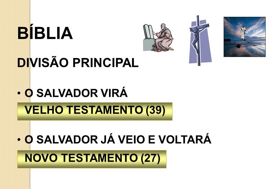BÍBLIA É ORGANIZADA POR ASSUNTO NÃO ESTÁ EM ORDEM CRONOLÓGICA