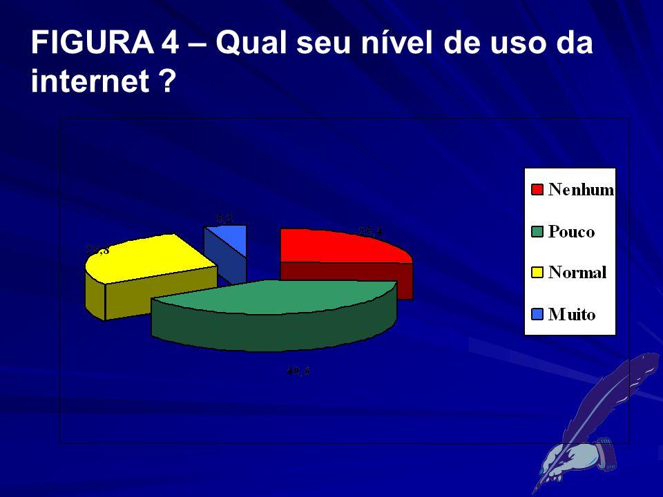FIGURA 4 – Qual seu nível de uso da internet ?