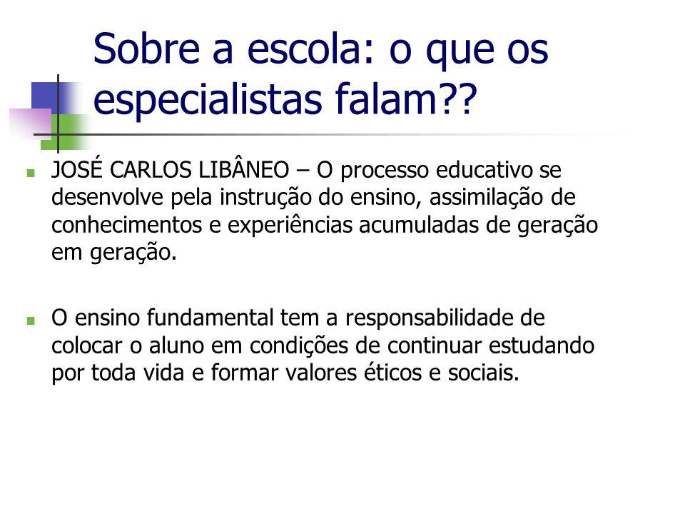 Sobre a escola: o que os especialistas falam?.