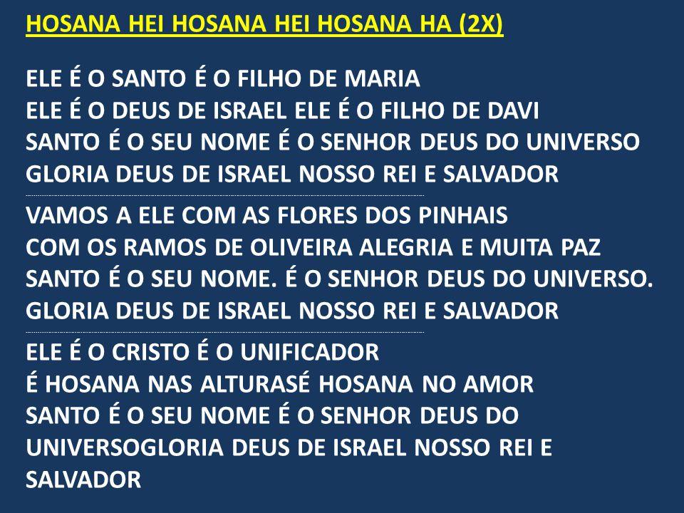 HOSANA HEI HOSANA HEI HOSANA HA (2X) ELE É O SANTO É O FILHO DE MARIA ELE É O DEUS DE ISRAEL ELE É O FILHO DE DAVI SANTO É O SEU NOME É O SENHOR DEUS