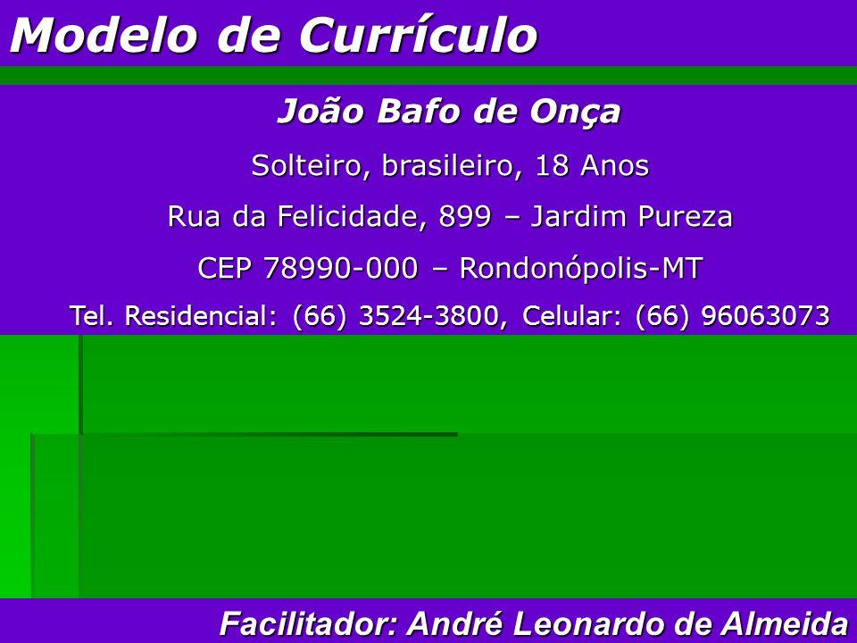 Modelo de Currículo João Bafo de Onça Solteiro, brasileiro, 18 Anos Rua da Felicidade, 899 – Jardim Pureza CEP 78990-000 – Rondonópolis-MT Tel.