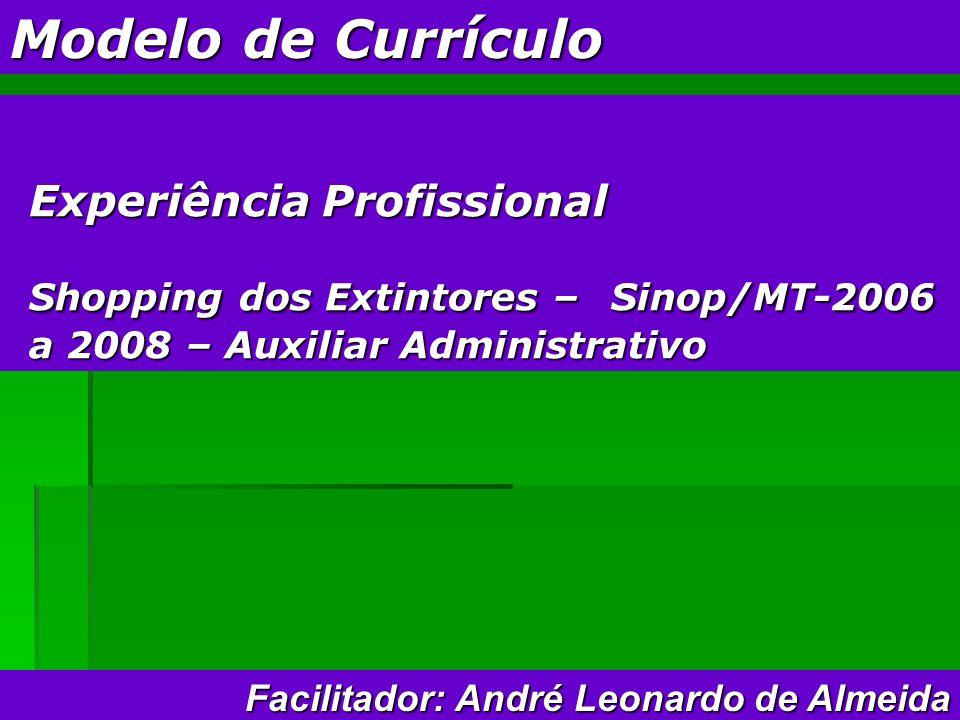 Modelo de Currículo Experiência Profissional Shopping dos Extintores – Sinop/MT-2006 a 2008 – Auxiliar Administrativo Facilitador: André Leonardo de Almeida