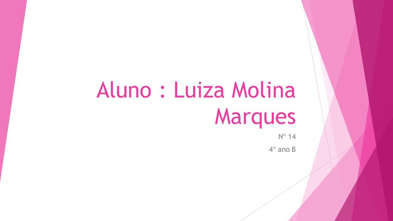 Aluno : Luiza Molina Marques Nº 14 4º ano B