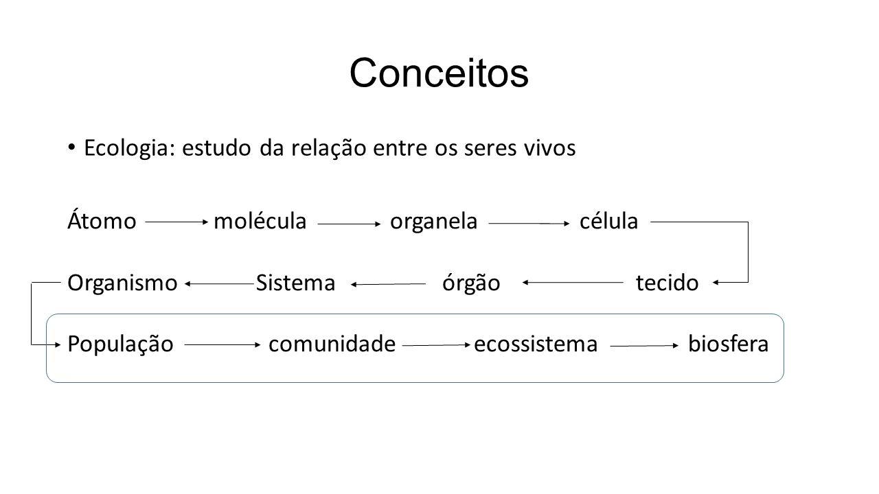 Conceitos Ecologia: estudo da relação entre os seres vivos Átomo molécula organela célula Organismo Sistema órgão tecido População comunidade ecossistema biosfera