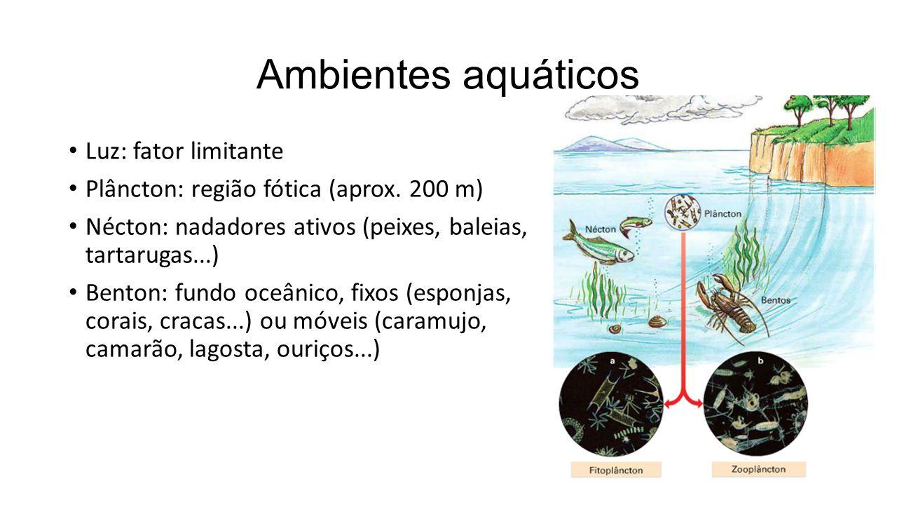 Ambientes aquáticos Luz: fator limitante Plâncton: região fótica (aprox.