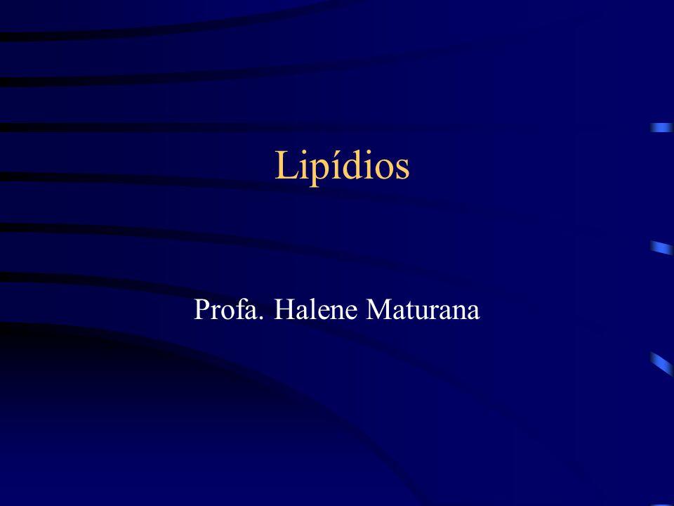 Lipídios Profa. Halene Maturana