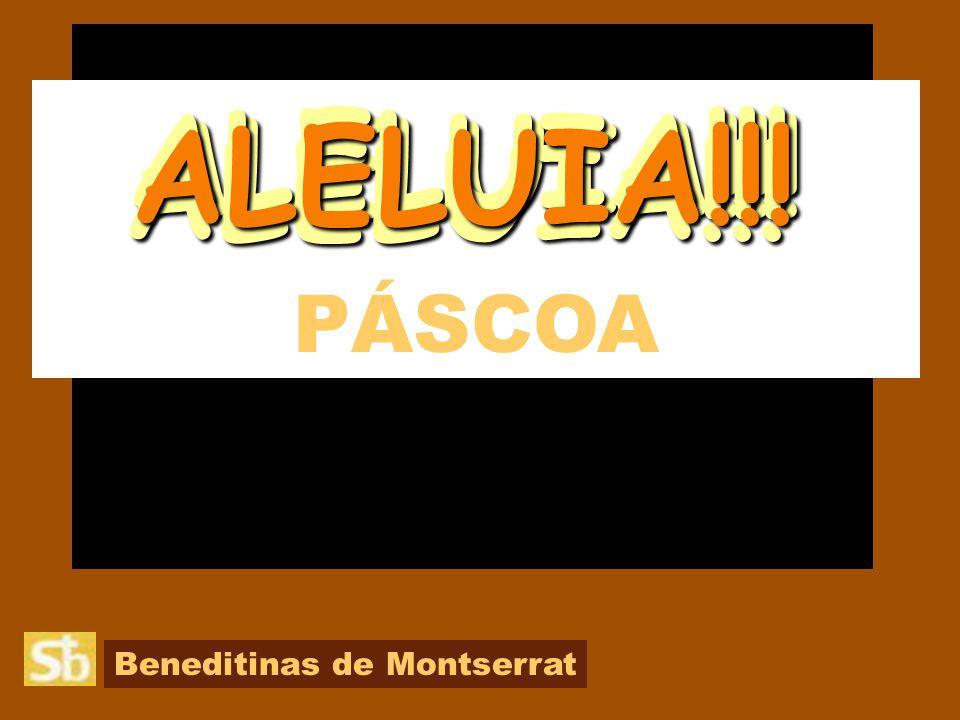 Beneditinas de Montserrat PÁSCOA ALELUIA!!! ALELUIA!!! ALELUIA!!! ALELUIA!!!