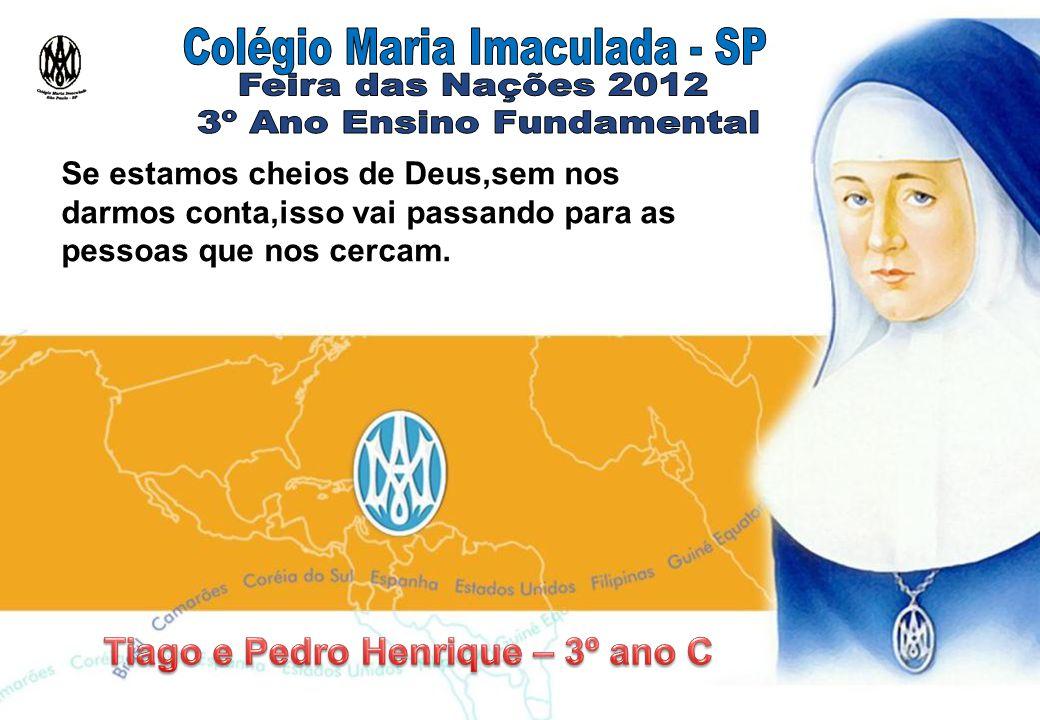 Educar é tratar de forma á imagem de Maria Imaculada.