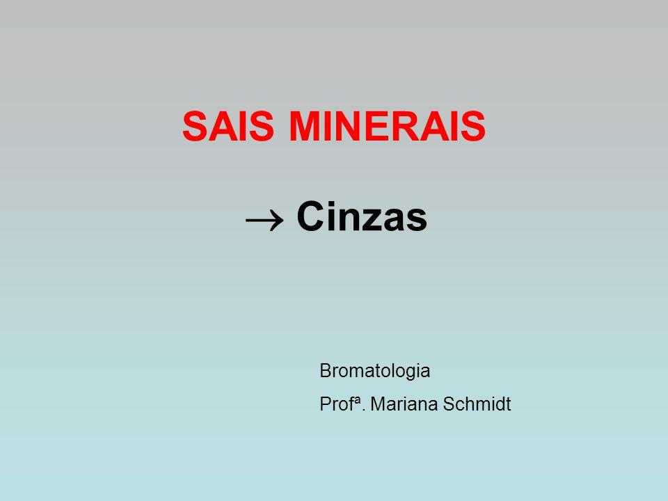 SAIS MINERAIS  Cinzas Bromatologia Profª. Mariana Schmidt