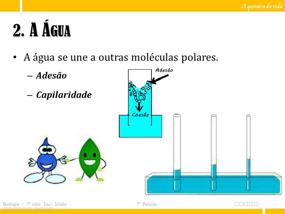 A química da vida 2.A Á GUA A água se une a outras moléculas polares.